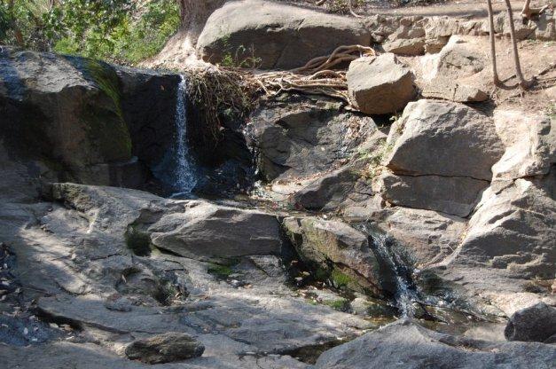 Reedy River Falls (40)