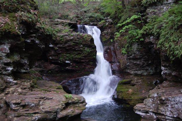 Adams Falls (7)
