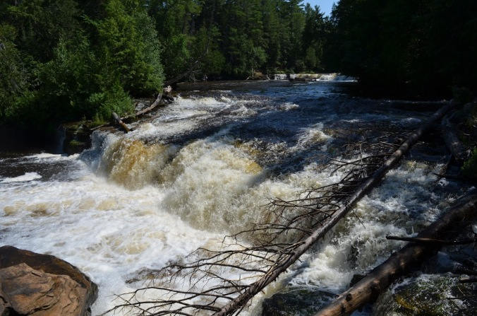 Lower Tahquamenon Falls (11)