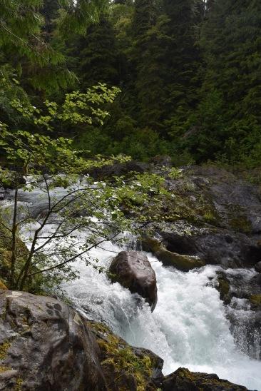 Salmon Cascades (1)
