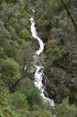 Pennyweight Falls (23)