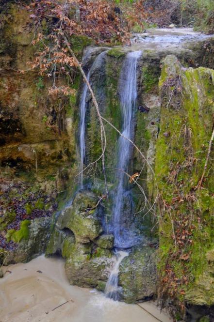 Clark Creek Falls (101)