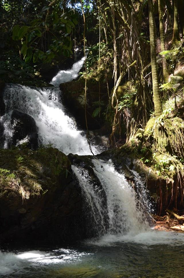 Onomea Falls (5)