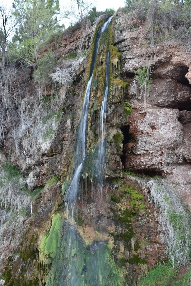 Kidney Springs Falls (4)